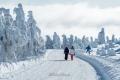 harz-brocken-winter-schnee-sonne-baum-gestalten-C_NIK_3597