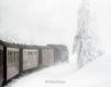 schmalspurbahn-dampflok-harz-brocken-winter-schnee-nebel-baum-gestalten-C_NIK_3421