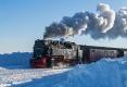 schmalspurbahn-dampflok-harz-brocken-winter-schnee-sonne-baum-gestalten-C_NIK_3756