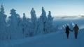 harz-brocken-winter-schnee-sonne-baum-gestalten-C_NIK_3812