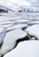 Lofoten-Fotokunst-Fotomalerei-rorbuer-winter-schnee-I_MG_7140-a.jpg