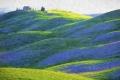 Toscana-Toskana-Crete-Senesi-digitale-Fotokunst-Fotomalerei-A_DSC2558-a.jpg