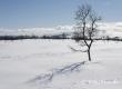 schweden-winter-haerjedalen-jaemtland-landschaft-fjell-fjaell-a_dsc9089-kopie