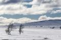 winter-landschaft-schweden-fjell-fjaell-a_dsc8999-kopie