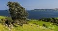Landschaften-Wild-Atlantic-Way-Meereskueste-Kueste-Strand-Nordkueste-Irland-Nordirland-irische-nordirische-A_SAM4278
