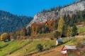 Herbst-Wald-Rumaenien-Siebenbuergen-Transylvanien-A_NIK500_6950 Kopie