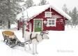 Rentier-schlitten-winter-schnee-Lappland-Finnland-Norwegen-Schweden-C_NIK_8250a Kopie