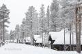 huetten-ferien-dorf-winter-schnee-norwegen-schweden-finnland-C_NIK_8224 Kopie
