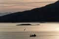 norwegen-fjord-trawler-fischkutter-silhouette-abendstimmung-e_o1i2551