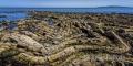 Wild-Atlantic-Way-Felsen-Kueste-Ostkueste-Irland-irischer-A-Sony_DSC2054