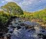 Landschaften-Fluss-natuerlicher-Bach-Wild-Atlantic-Way-Irland-Irische-Kueste-Westkueste-A_SAM4664