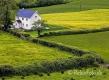 Landschaften-Landhaus-Haus-Wild-Atlantic-Way-Irland-Irische-Kueste-Westkueste-A_SAM4658