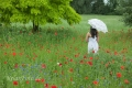 frau-relaxen-entspannung-ruhe-mohn-blumen-wiese-j_mg_1283