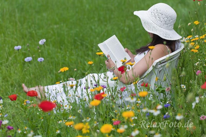 fotos mensch und natur wildblumenwiese blumenwiese. Black Bedroom Furniture Sets. Home Design Ideas