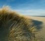 Ellenbogen-Duenen-Sand-Sylt-Winter-Bilder-Fotos-Strand-Landschaften-A7RII-DSC01320