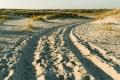 Ellenbogen-Duenen-Sand-Sylt-Winter-Bilder-Fotos-Strand-Landschaften-A7RII-DSC01342
