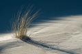 Ellenbogen-Duenen-Sand-Sylt-Winter-Bilder-Fotos-Strand-Landschaften-A_NIK500_2464