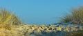 Ellenbogen-Duenen-Sand-Sylt-Winter-Bilder-Fotos-Strand-Landschaften-B_SAM_1419