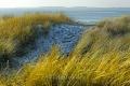 Ellenbogen-Duenen-Sand-Sylt-Winter-Bilder-Fotos-Strand-Landschaften-C_SAM_1366