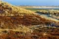 Ellenbogen-Duenen-Sand-Sylt-Winter-Bilder-Fotos-Strand-Landschaften-RX_01227
