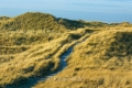 Ellenbogen-Duenen-Sand-Sylt-Winter-Bilder-Fotos-Strand-Landschaften-RX_01246