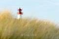 Ellenbogen-Leuchtturm-Duene-Sylt-Winter-Bilder-Fotos-Strand-Landschaften-B_NIK_1514a