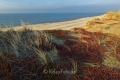 Rotes-Kliff-Wenningstedt-Duenen-Sand-Sylt-Winter-Bilder-Fotos-Strand-Landschaften-A_NIK500_2241