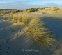 Ellenbogen-Duenen-Sand-Sylt-Winter-Bilder-Fotos-Strand-Landschaften-A7RII-DSC01263a