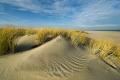 Ellenbogen-Duenen-Sand-Sylt-Winter-Bilder-Fotos-Strand-Landschaften-A7RII-DSC01388