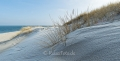 Ellenbogen-Duenen-Sand-Sylt-Winter-Bilder-Fotos-Strand-Landschaften-A_NIK500_2342