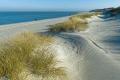 Ellenbogen-Duenen-Sand-Sylt-Winter-Bilder-Fotos-Strand-Landschaften-A_NIK500_2441