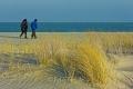 Ellenbogen-Duenen-Sand-Sylt-Winter-Bilder-Fotos-Strand-Landschaften-B_SAM_1452